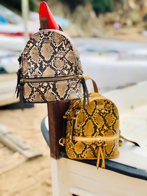 Python Backpack